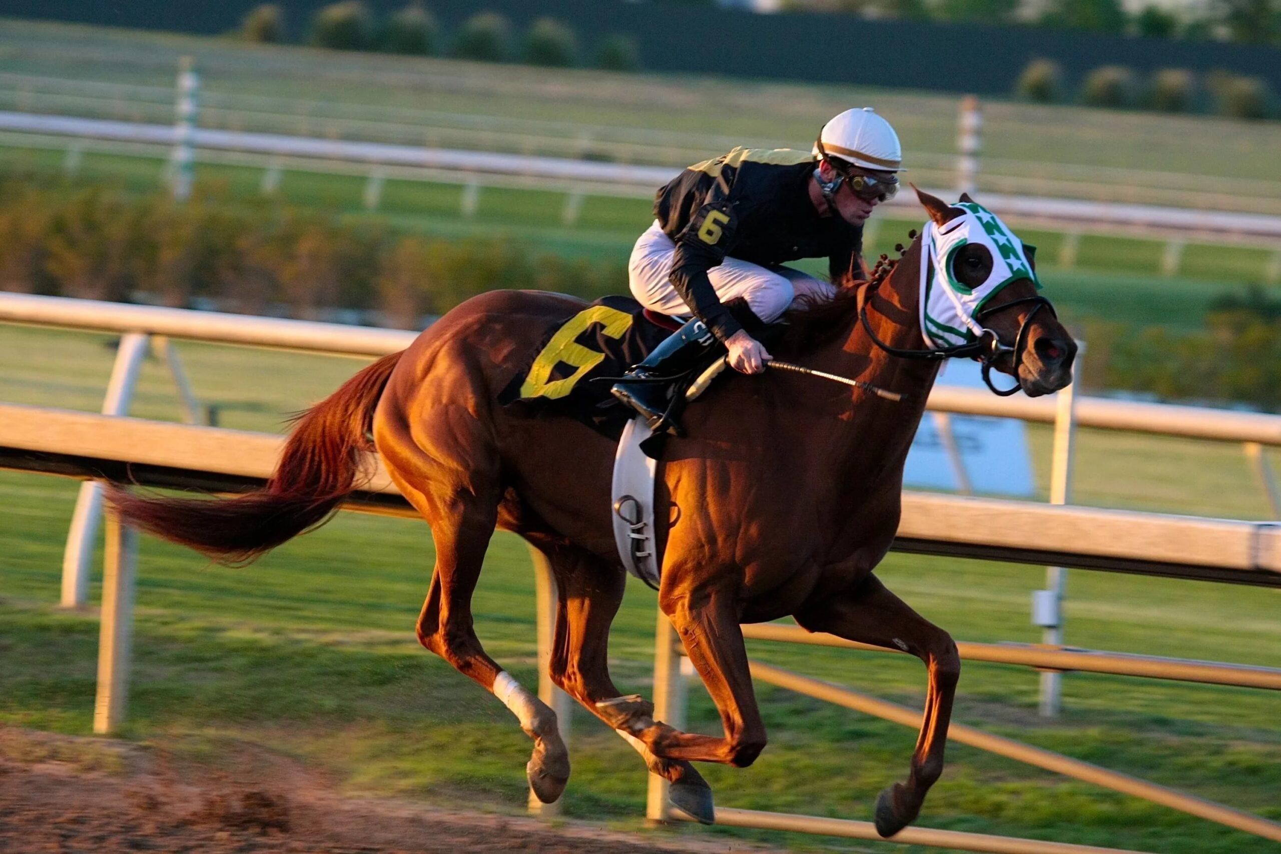 Casinoper Online At Yarışı